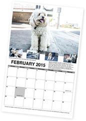 Rescued L.A. Dogs Calendar 2015