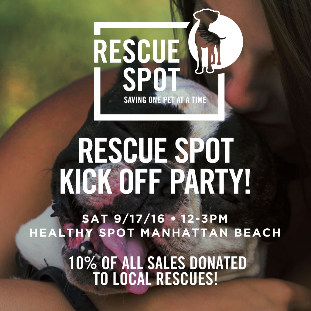 Rescue Kick Off Party