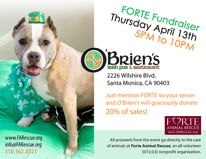 O'Brien's Fundraiser - April 13, 2017