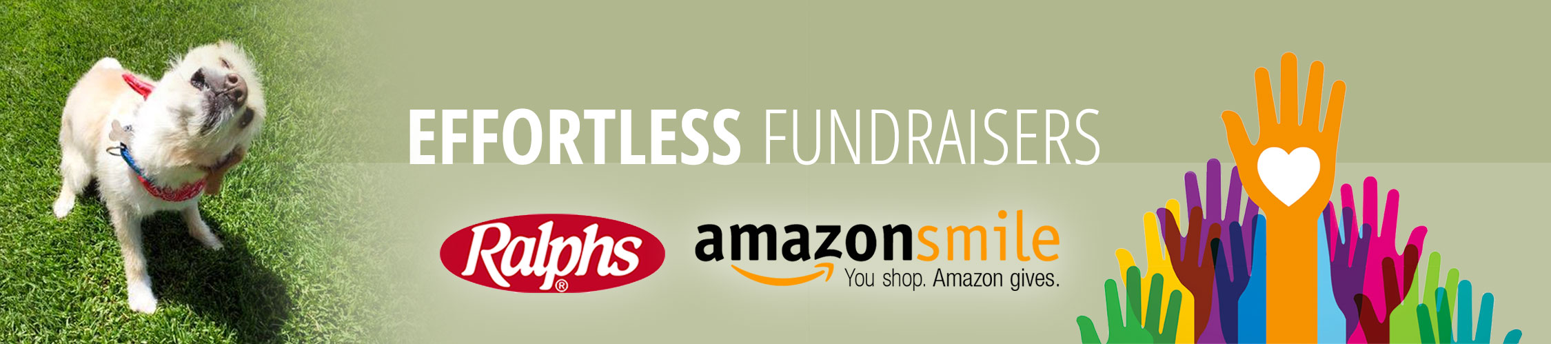 Effortless Fundraisers