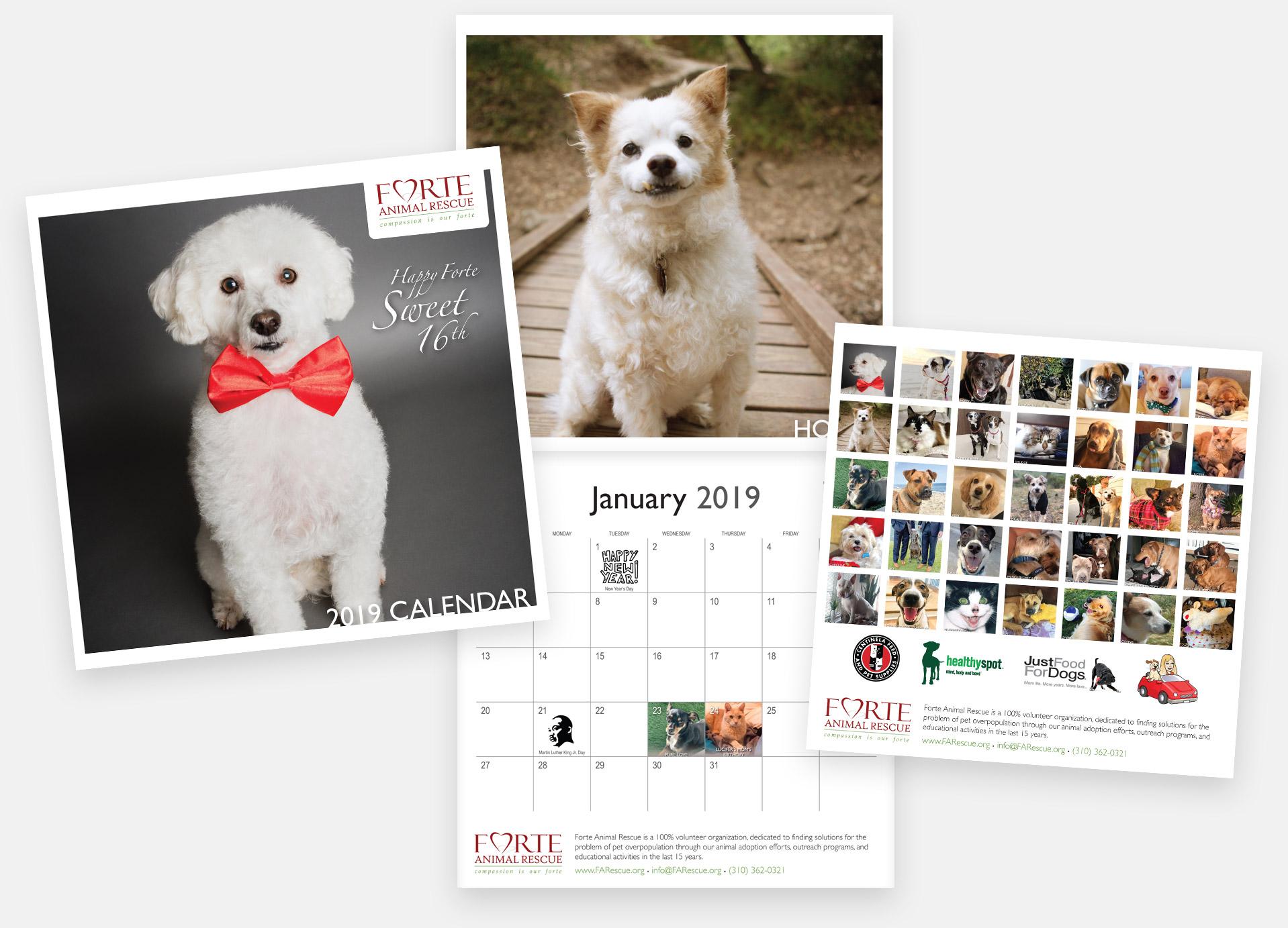 2019 Forte Calendar
