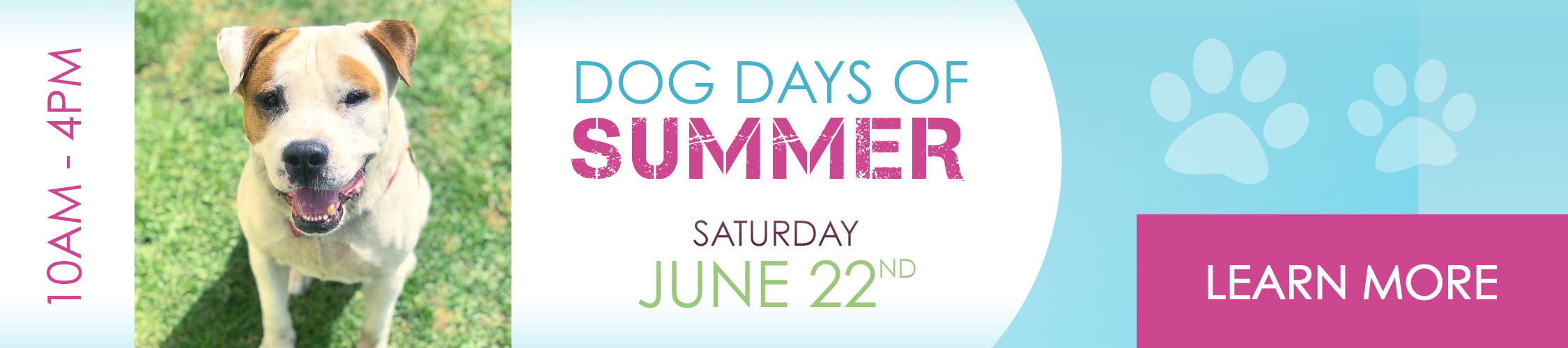 Dog Days of Summer Saturday June 22nd