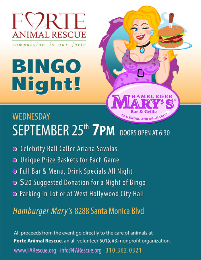 Bingo Night - September 25, 2019 at 7 PM