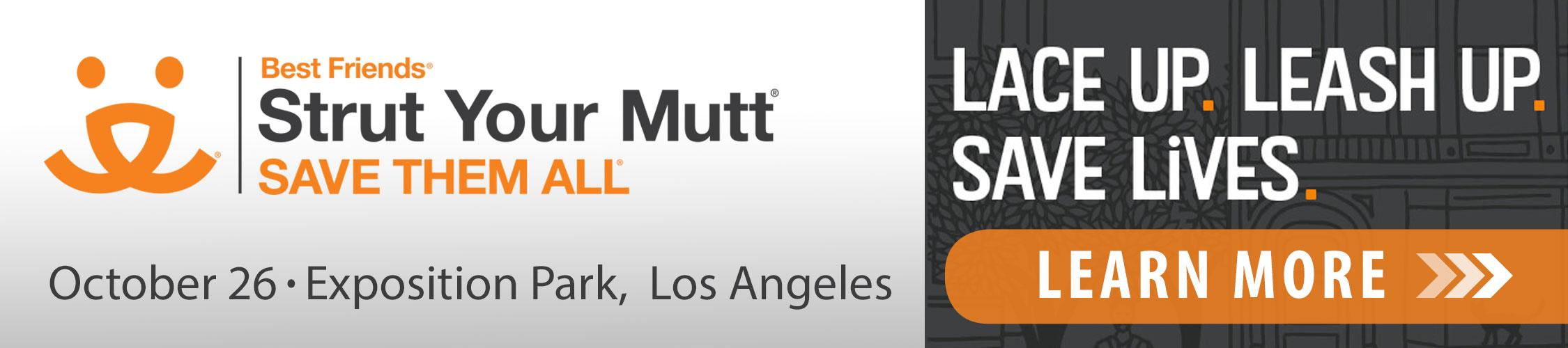 Strut Your Mutt 2019