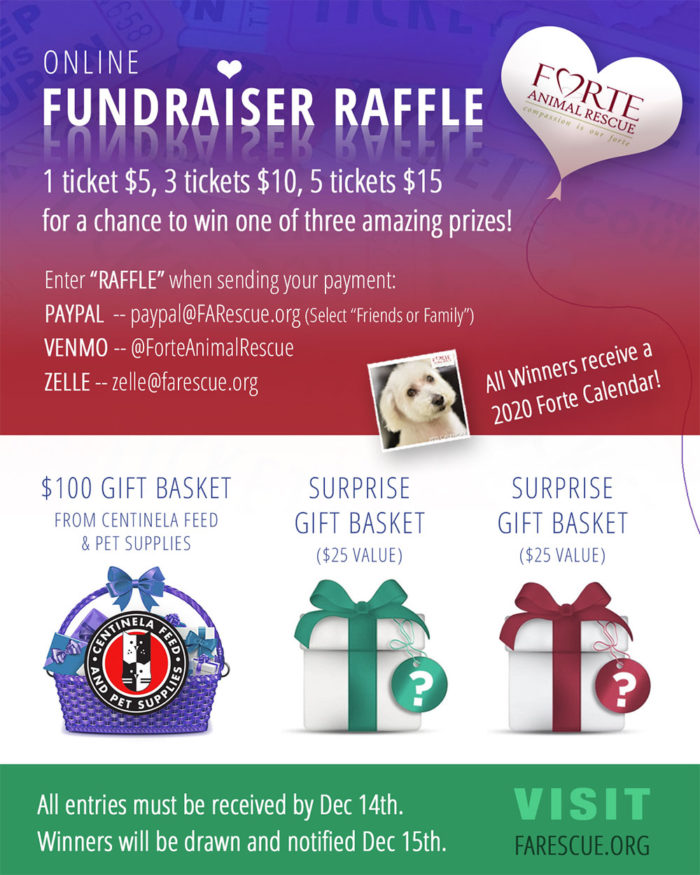 Online Fundraiser Raffle