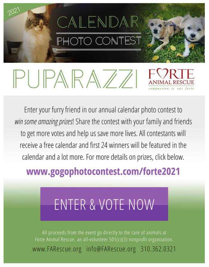 Enter & Vote Now: Forte's Annual Photo & Calendar Contest